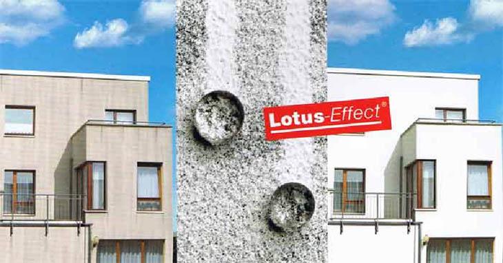 Lotusan (Лотусан) - краска для фасадов