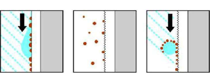 пример лотос эффекта